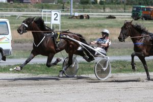Tears to Heaven mit Saskia Krause im Stamer Cup